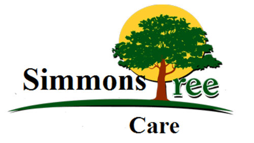 Tree Services Hampton | Simmons Tree Care Hampton